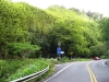 [Road to Hana]